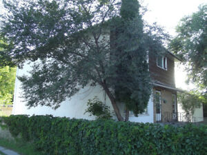 FOR BIG FAMILY OR FOSTER HOUSE-5 BR. 470 BELMONT AVE
