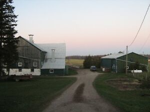 Farm/Commercial Property Kitchener / Waterloo Kitchener Area image 3