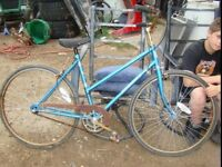 "26"" Supercycle 3 speed bike"