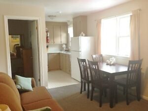 8 Month fully furnished one bedroom apartments for September