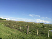 CREMONA ACREAGE WITH COUNTRY VIEWS