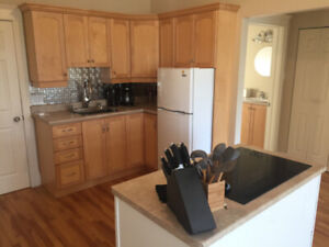 1 bedroom fully furnished suite Fall River