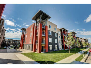 Awesome Condo in Airdrie