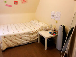 Room For RENT!!!! Downtown房子招租