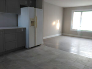Newly Renovated Four Bedroom House - 182 Mark St.