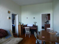 Room available in lovely downtown core 2 bedroom apartment