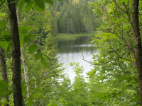 1 acre water-front on Long Lake, n-west of Englehart