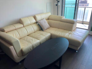 Cozy leather couches with table and pillow