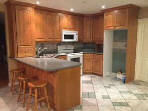 Oak Kitchen Cabinets with Oven and Microwave
