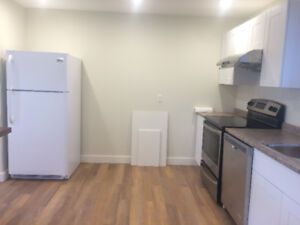 Big apartment for rent more than 1300 sf with  garage