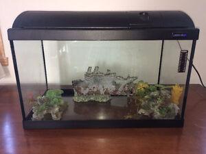 Aquarium 20 gallons avec filtre et décorations