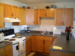 Duncan 2 Bedroom Condo available for July 1st