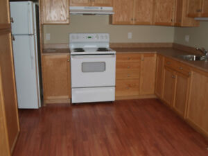 Large one bedroom apt downtown Moncton