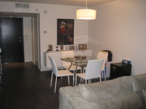 BRIGHT SPACIOUS CONDO IN DOWNTOWN MONTREAL