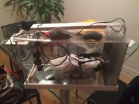 1 year old Fish tank available for sale