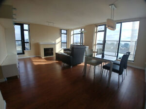 Almost new fully furnished 2 bdrm condo in Richmond Lansdowne