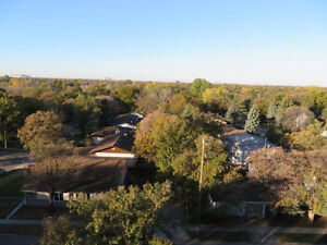 Location, Location, Location! - 175 Pulberry Road