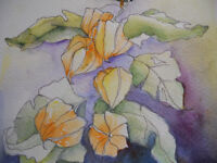 WATERCOLOUR PAINTING / DRAWING