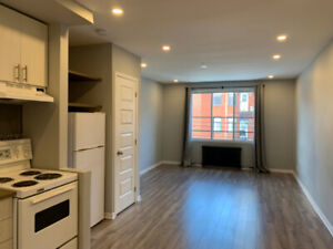 RENOVATED MILE-EX STUDIO - HEAT AND WIFI INCLUDED