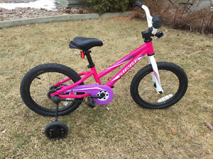 Girls 16 inch Specialized Hotrock Bicycle- EUC!