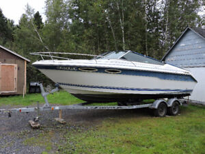 24 ft. 1990 Sea Ray 220