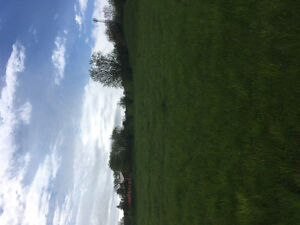 Land for crops for rent