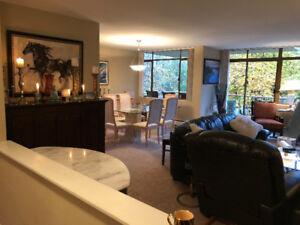 Lovely Apartment home to share in Kerrisdale