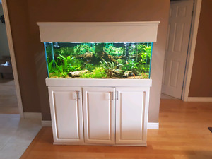 55 gal oceanic aquarium with stand and canopy