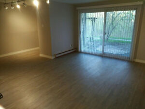 Large Aurora Basement Room For Rent (Walkout/Ravine View)