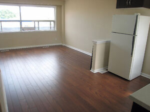 NEWLY RENOVATED EXTRA LARGE 2 BEDROOMS + DEN