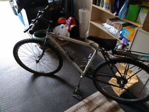1990's Rocky Mountain Blizzard bicycle
