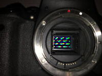 Camera sensor/CCD cleaning service*