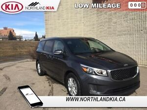 2015 Kia Sedona LX   - Low Mileage