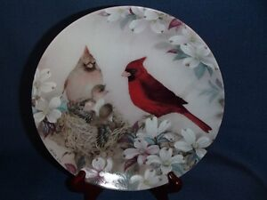 Collector plate In box