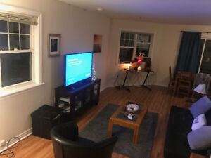 Looking for Roommate! Fully Furnished Apartment on South Street