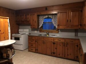 Newly Renovated 2 Bedroom Lower Apartment Fort Erie