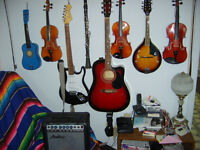 Various string instruments