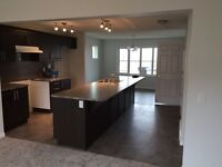 Brand new house for rent June 1st