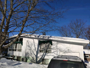 4+5 Bedroom On-Hill House for Rent! Near campus! Split-entry!