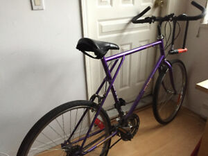 Selling Large Bike