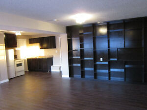 1 bedroom suite in duplex.