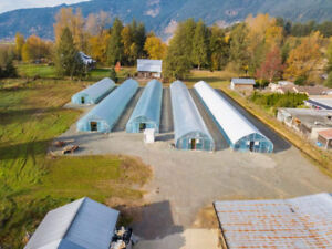 House with Acreage Abbotsford