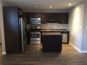 NEW - 2 Bedroom Basement Suite Available Now!!