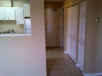 2 Bedroom Suites Available for Rent