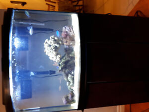 36 gallon bow  fish aquarim with stand and hood