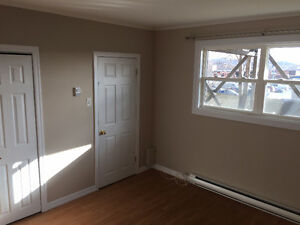 2 Bedroom apartment newly renovated, close to MUN & downtown St. John's Newfoundland image 7