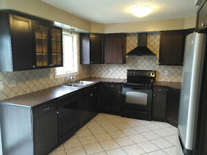 Updated home with a pool Kitchener / Waterloo Kitchener Area image 6