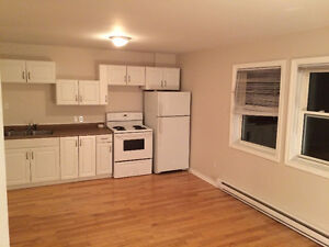 1 Bedroom Apartment - Available July 1st or August 1st