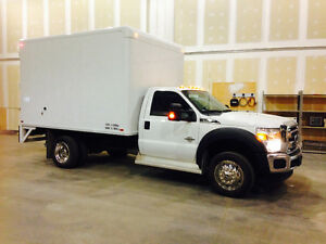 Ford F-550 4x4, F250 4x4, Horse trailer, 2 Horses For Sale
