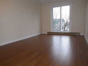 Fully Renovated Downtown 1 Bedroom in Great Loction